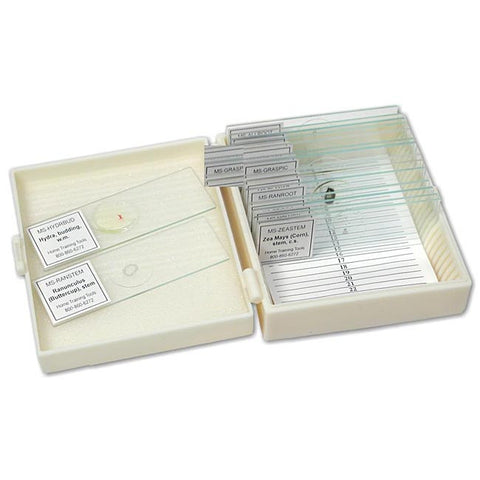 Apologia Biology Prepared Slides - Set of 16 Microscope Slides