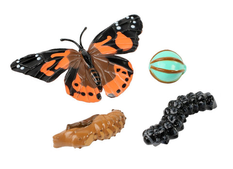 Insect Lore Butterfly Life Cycle Stages - Set of 4 Figures