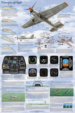 Principles of Flight Poster 24x36 Physics & Plane Parts