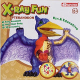 Pteranodon X-Ray Fun Flying Dinosaur Anatomy Kit by 4D Master