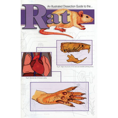 Illustrated Dissection Guide Book to the Rat, Allen Kurta
