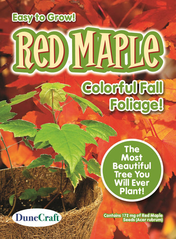 Red Maple Tree Seed Pack-Grow Your Own Beautiful Fall Foliage