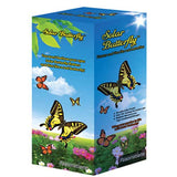 Solar Powered Butterfly; Green Science