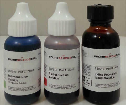 Economy Microscope Slide Staining Kit includes 3 Stains