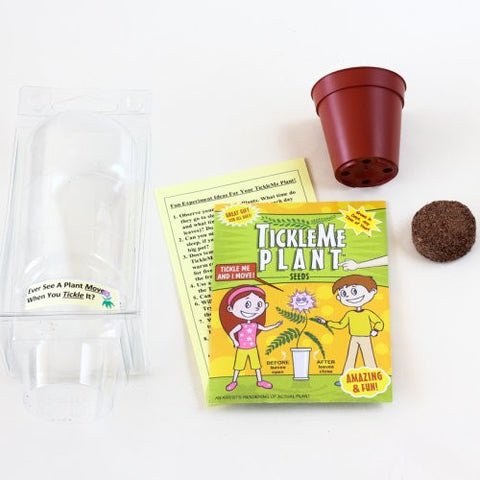 Tickle Me Ticklish Potted Plant Party Favor Mini-Greenhouse Kit