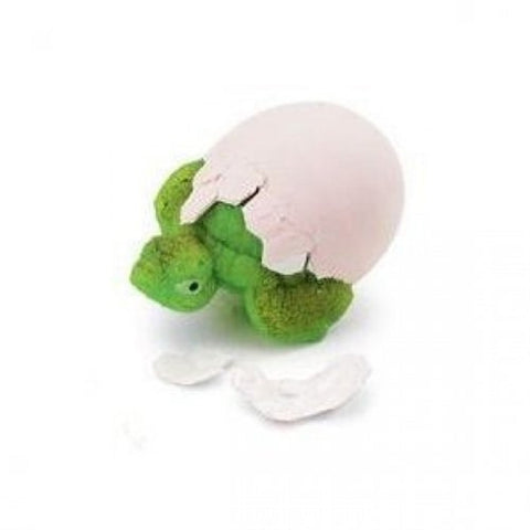 Hatch'ems Turtle Egg Grow Your Own Baby Tortoise