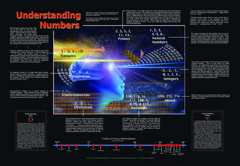 Understanding Numbers Laminated Poster 36x26""