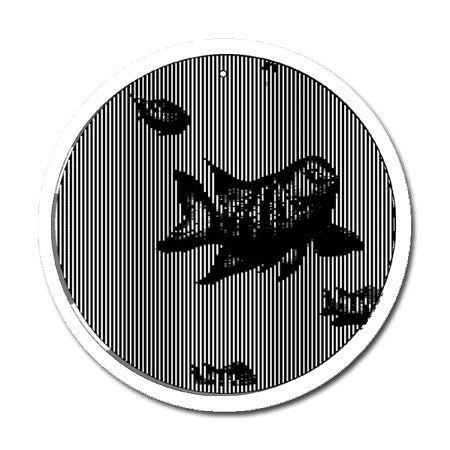 Swimming Fish - Medium 5.5 Inch CineSpinner - Animated Suncatcher