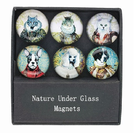 Glass Magnets with Dog and Cat Prints  - Set of 6