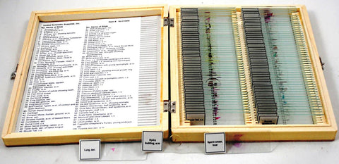 100 Prepared Microscope Slides In Deluxe Wooden Case - Online Science Mall