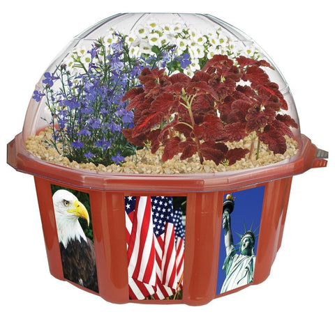 Victory Garden Flower Growing Seeds & Terrarium Kit