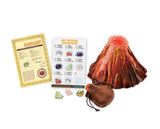 4M KidzLabs Volcano & Crystal Mining Science Kit