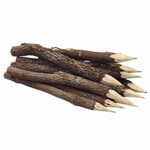 Twig-uums Whimsical 7 Inch  Twig Pencils PK of 5