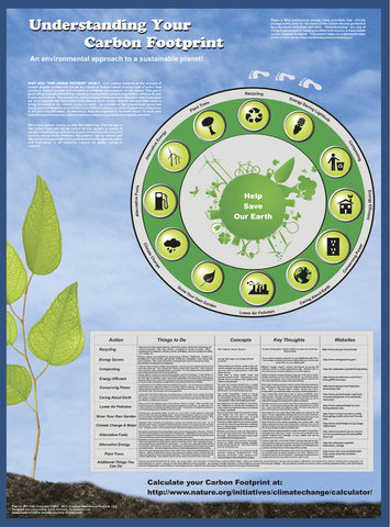 Understanding Your Carbon Footprint - Environmental Science Poster, 38x26""