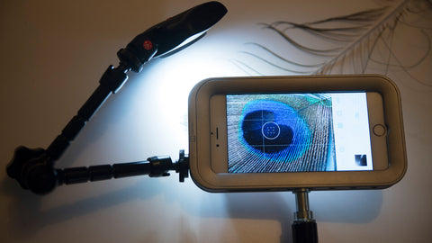 iPhone macro photography setup with Helium Core and Manfrotto Lumie LED