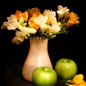 White Pear & Freesia