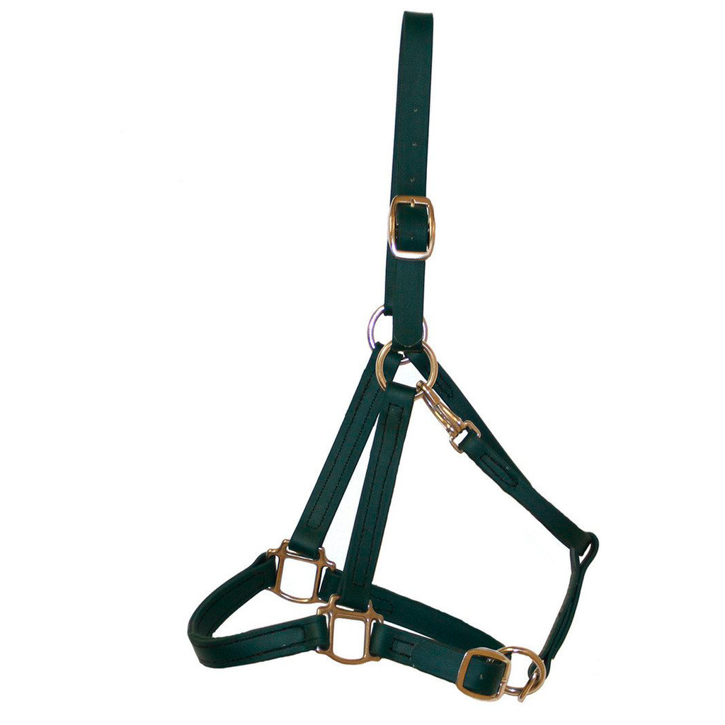 Hunter Green Biothane Halter