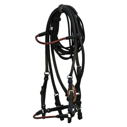 Black Bridle with Chestnut Accents