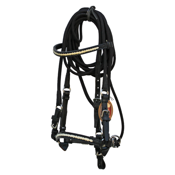 Black Bridle with White Accents