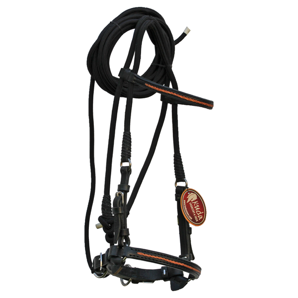 Black Bridle with Orange Accents