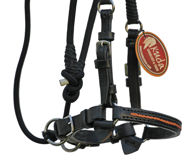 Black Training/Bitless Bridle with Chestnut Accents