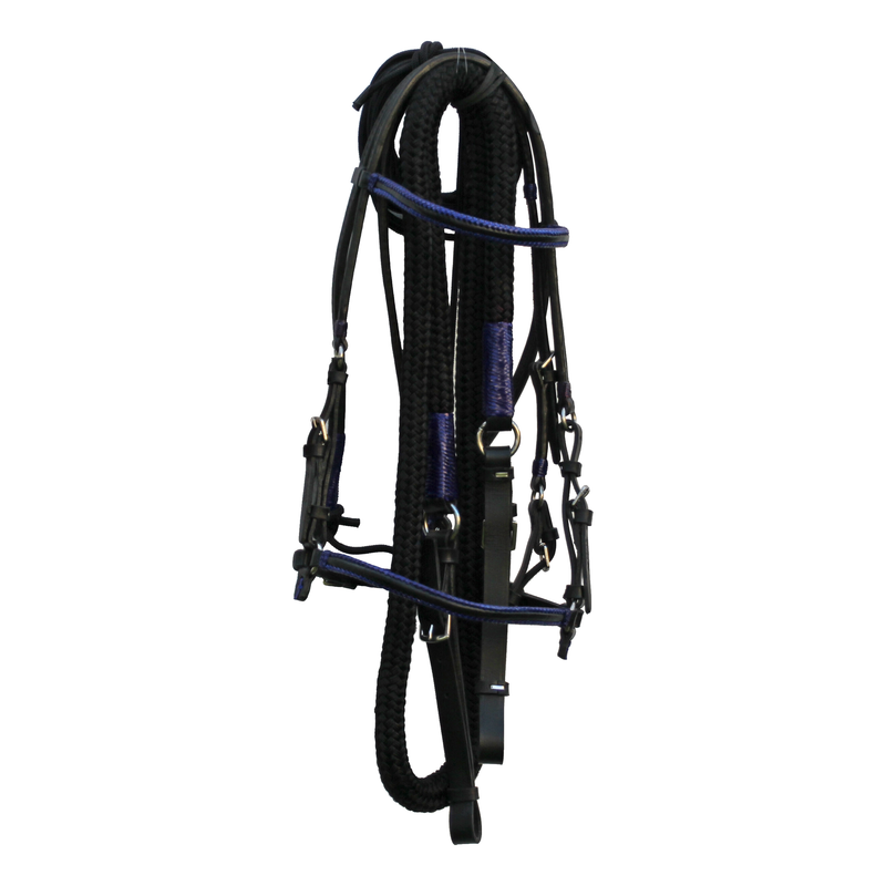 Black Bridle with Navy Accents