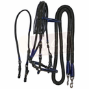 Black Leather Bridle Set with Blue Accents