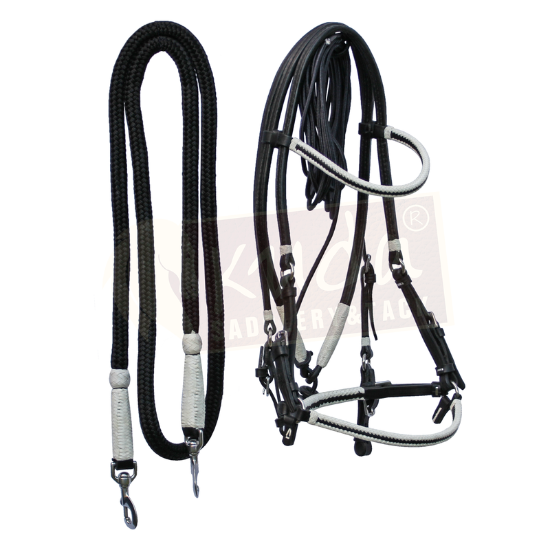 Bridle Set with White Accents, and S.S. Snaps