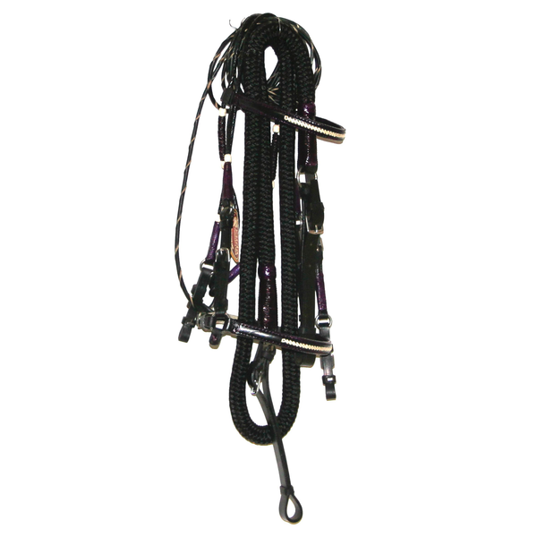 Premium Black Bridle with Purple and white accents