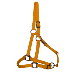 Yellow Biothane Halter