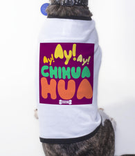Ay Chihuahua, Pet apparel