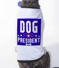Dog For President, Pet apparel