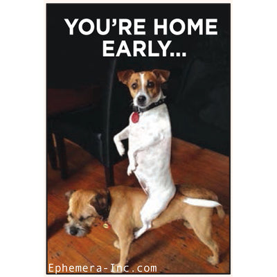 You're Home Early-Magnet