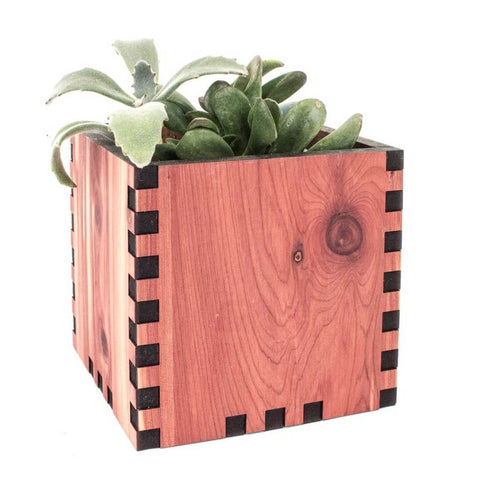 Square Desktop Planter