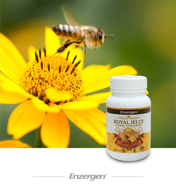 Royal Jelly - Kiwicorp New Zealand
