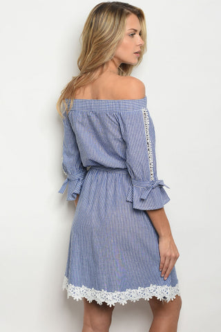 Blue Striped Embroidered Hem Dress-Back View