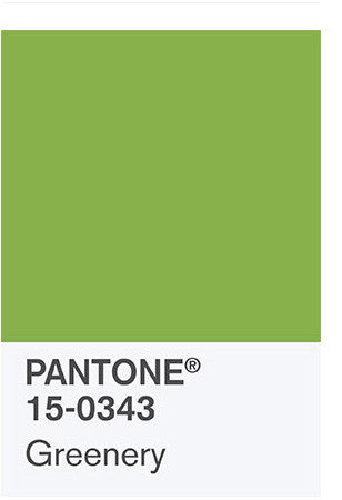 How to be Fashionable in 2017 Colour of the Year – GREENERY