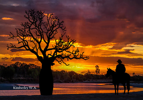 Free Standing large Photo Board. Kimberley Stockman and Boab Tree Sunset