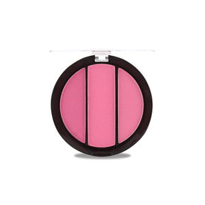 Professional Make up Artist 3 Color Blusher - 1301-06