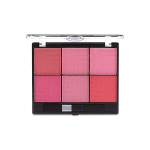 6 Color Blusher Palette - 1317
