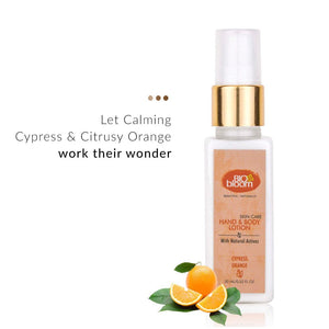 Body Lotion - Cypress Orange Hand & Body Lotion