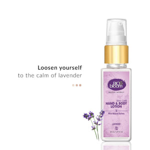 Hand & Body Moisturizer - Hand & Body Lotion - Lavender