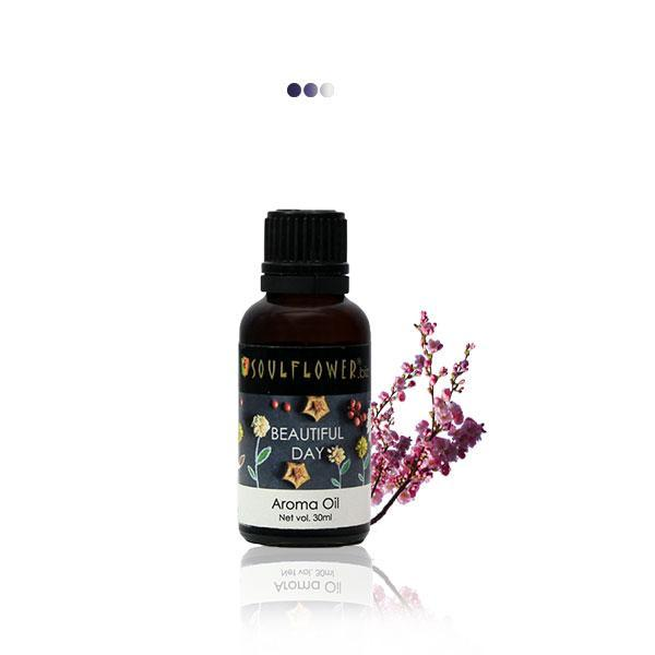 Home Fragrances And Decor - Beautiful Day Aroma Oil