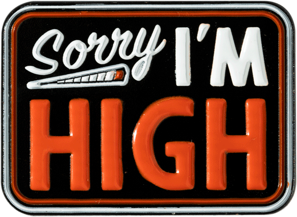 Sorry I'm High Pin Pin Data Crew | DataCrew