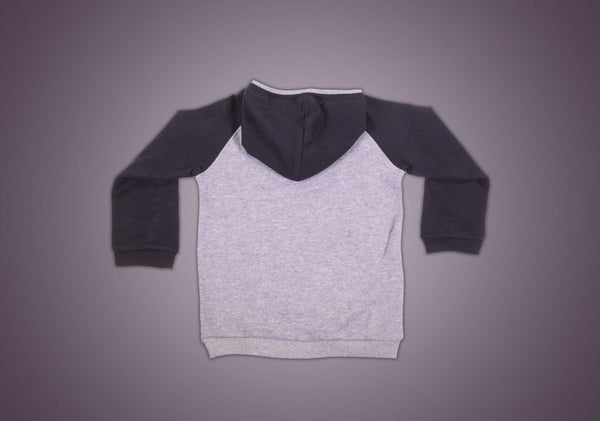products/boys-hoodie-in-organic-cotton-boy-2_e84e2f5e-f28a-4bb2-a806-5bf3d80a7668.jpg