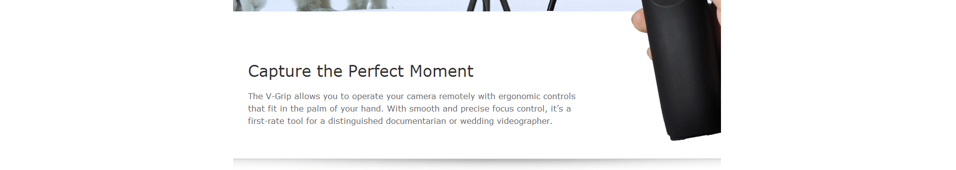 capture the perfect moment
