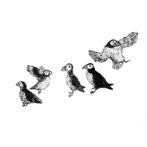Playful Puffin Print