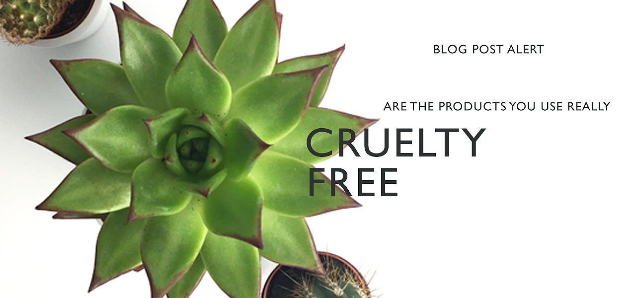 Are the products you buy really cruelty free?