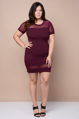Plus Size Sheer Insert Mesh Dress - Violet