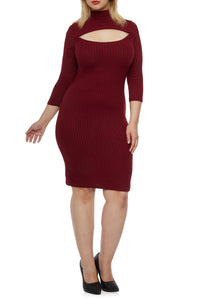 Plus Size Ribbed Dress - Burgundy